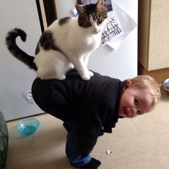 cat boy back