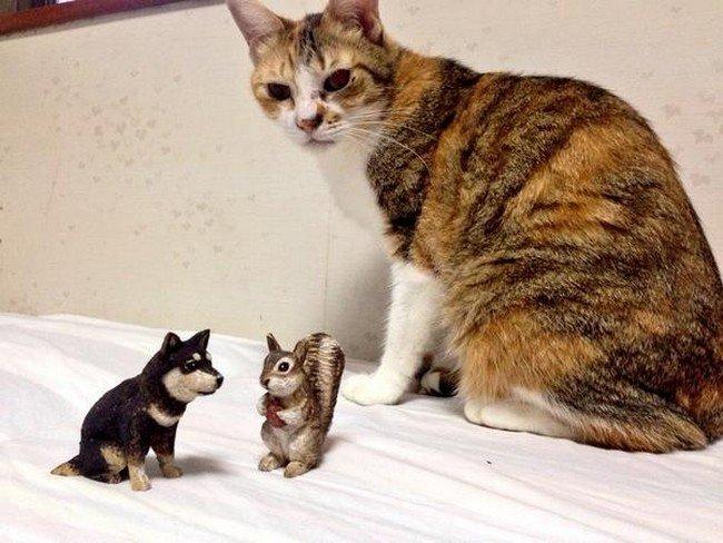 cat looking at mini sculptures