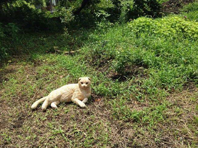 cat sculpture grass