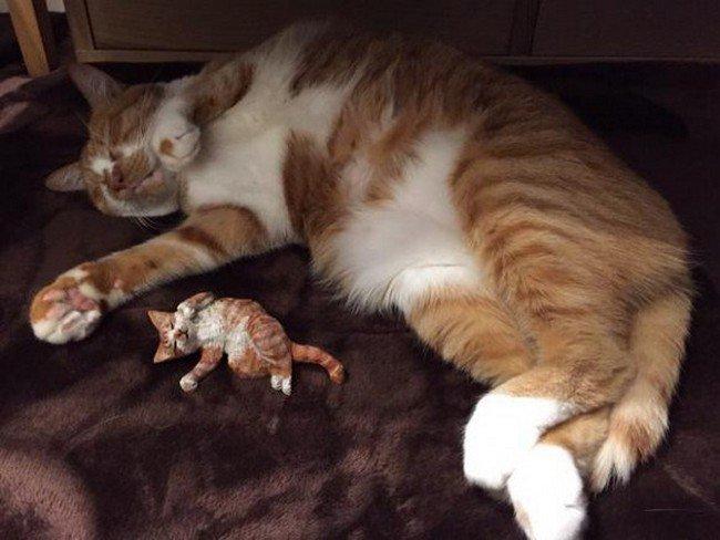 cat sleeping with sculpture