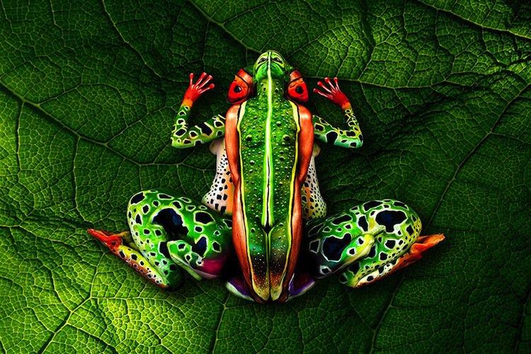 chameleon-frog