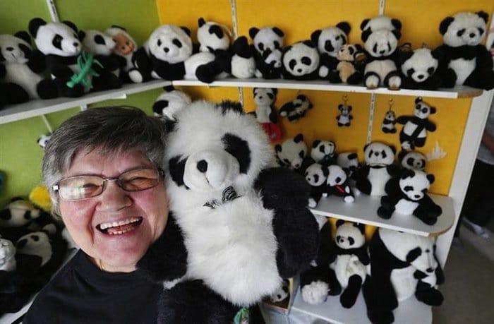 collections-pandas