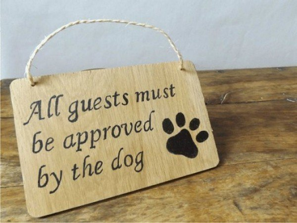 dog approval sign