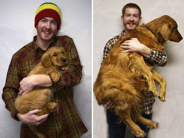 dogs-big