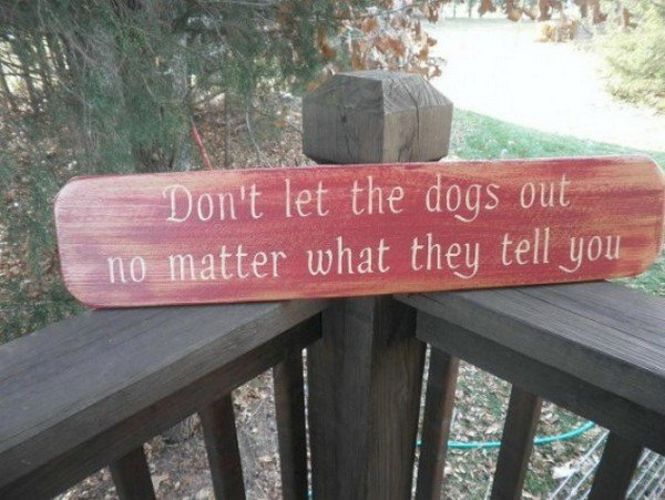 13 Of The Funniest Beware Of The Dog Signs Ever