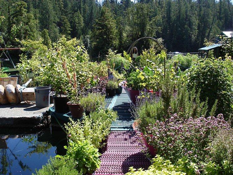 freedom-cove-garden