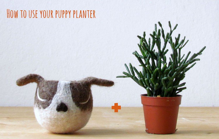 how to puppy planter
