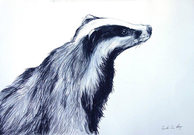 janie-stapleton-badger