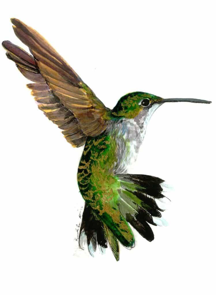 janie-stapleton-bird