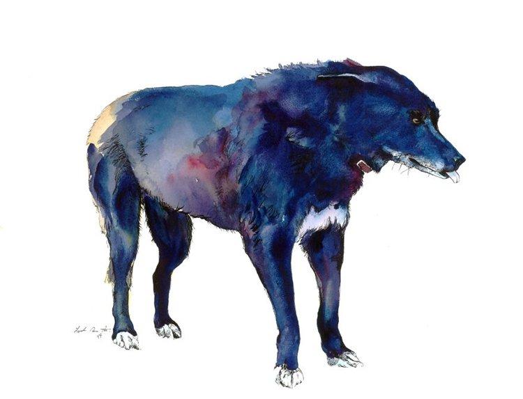 janie-stapleton-dog
