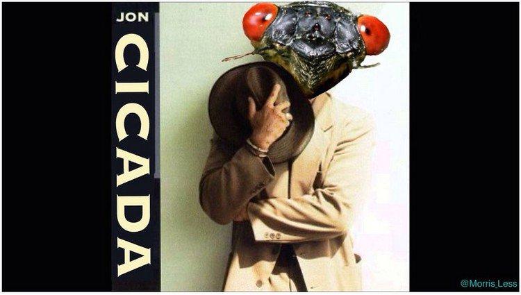 jon cicada