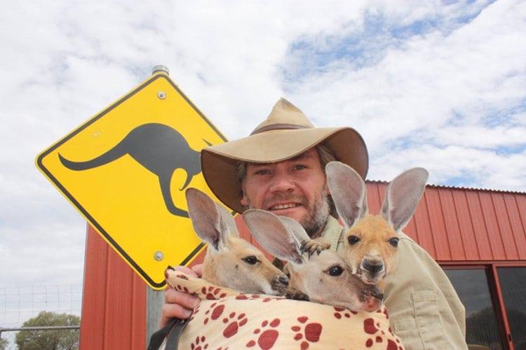 kangaroo-dundee-chris-brolga-barns-kangaroo-sanctuary