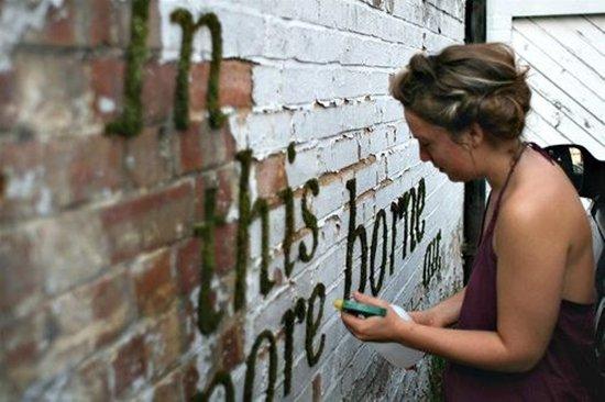 moss-graffiti