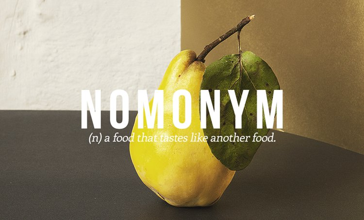 new-words-nomonym