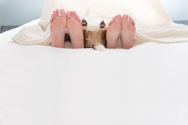 newborn-photo-shoot-with-dog-feet