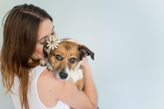 newborn-photo-shoot-with-dog-shoulder