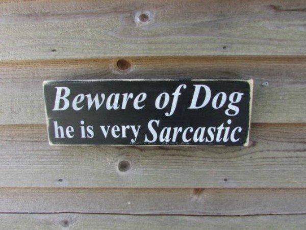 sarcastic dog sign