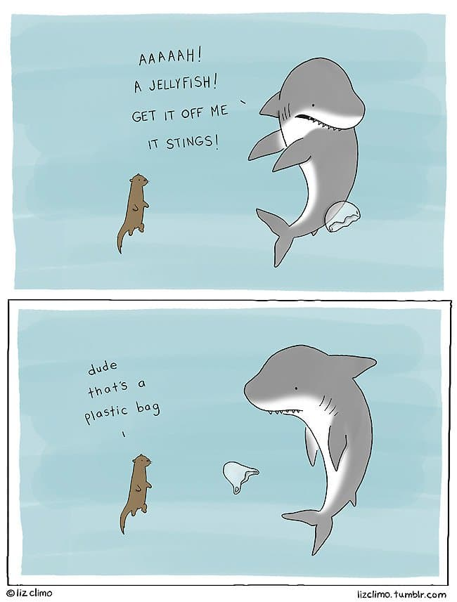 Illustrator Liz Climo Created These Cute And Hilarious Animal Cartoons That Will Make You Smile