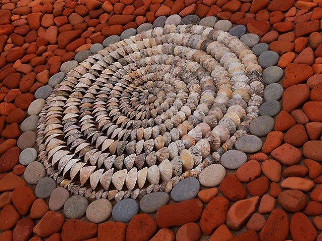 shell circle