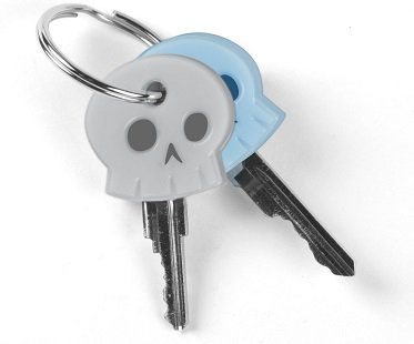 skeleton key covers keys