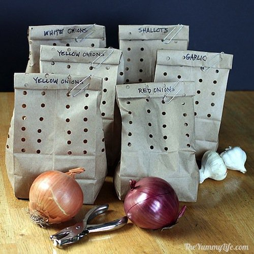 stuff-onions