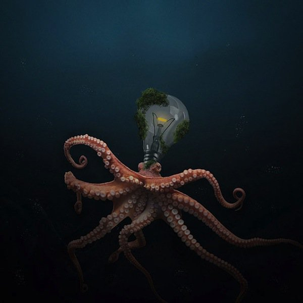 ted-octopus