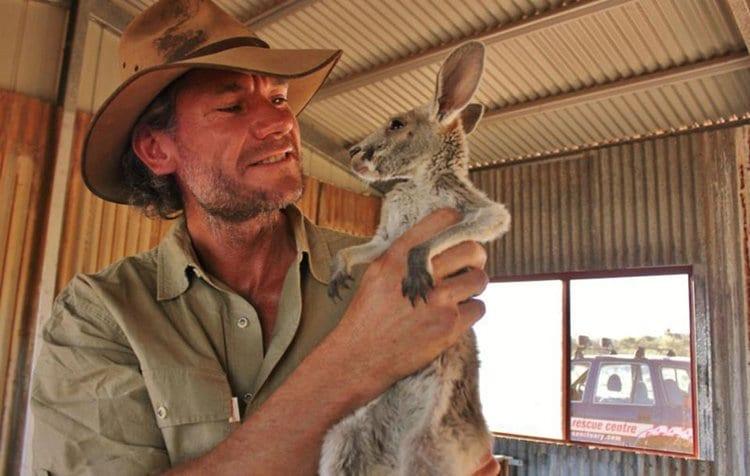 top-baby-kangaroo
