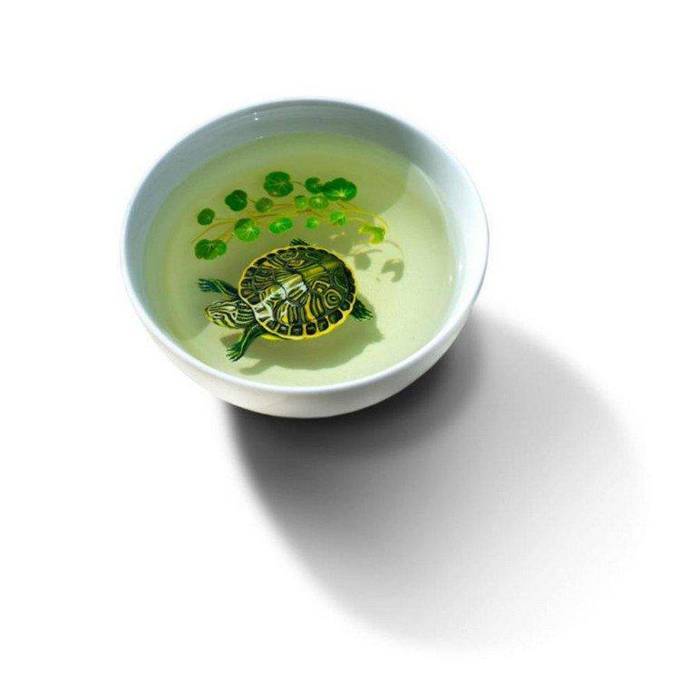 turtle resin