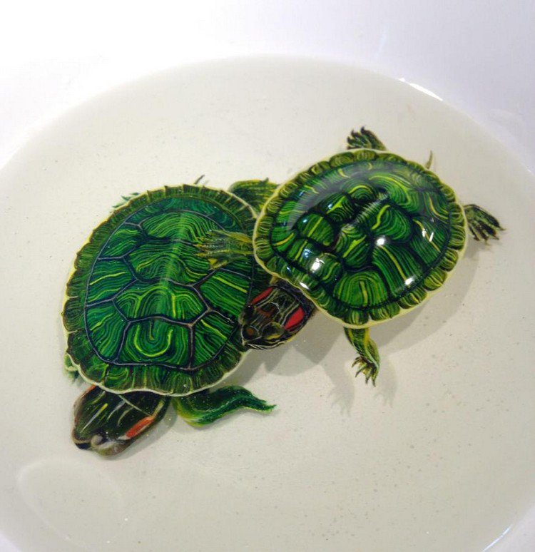 turtles resin