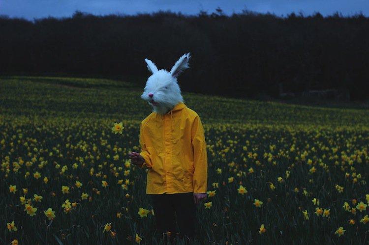 valdas-bunny