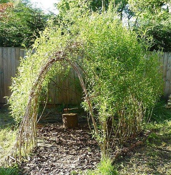 willow-den