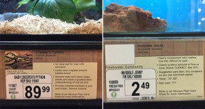 Jeff Wysaski Replaces Labeling In His Local Pet Store