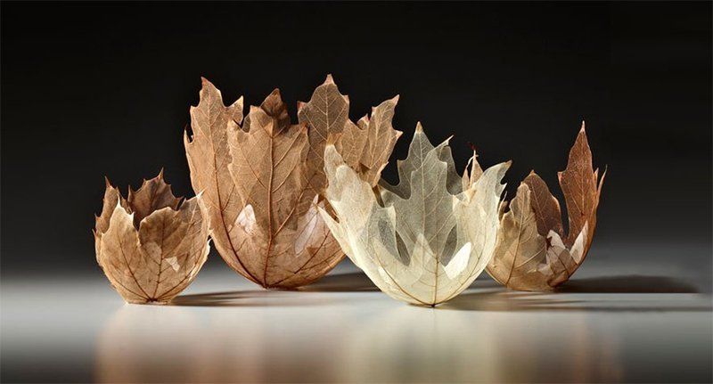 Leaf Bowl Collection
