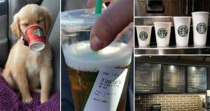 Money Saving Starbucks Hacks
