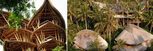New Yorker Moved To Bali To Build Houses