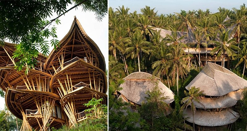 Nature Friendly Bamboo House Design: New Yorker Elora Hardy Moved To Bali To Build Sustainable