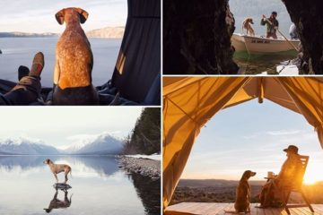 Rescue Dog And Her Owner Go On Adventures Together