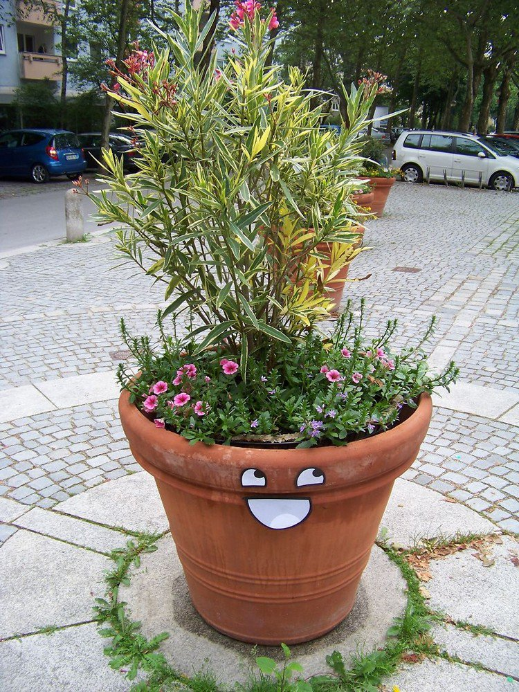 awesome flower pot