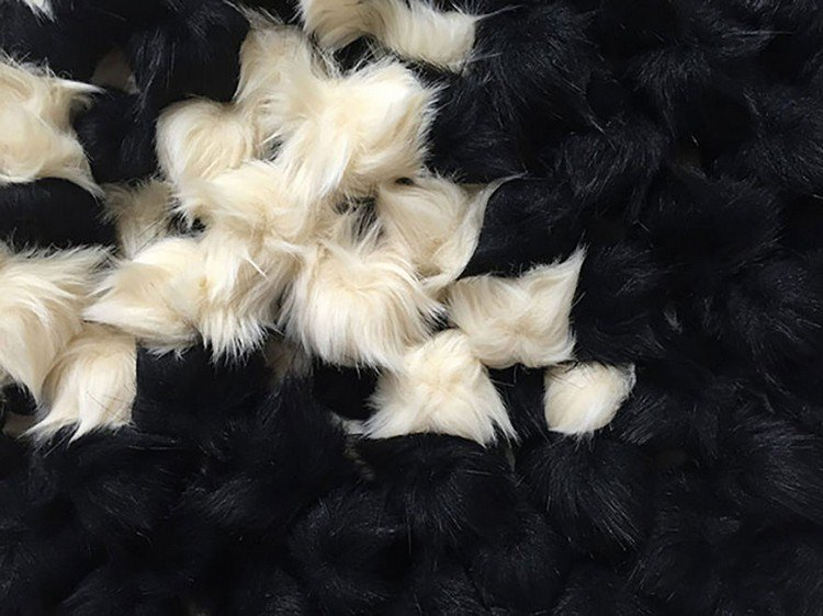 black white furballs close up
