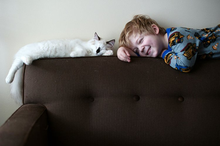 boy-cat-friendship-beth-mancuso-back