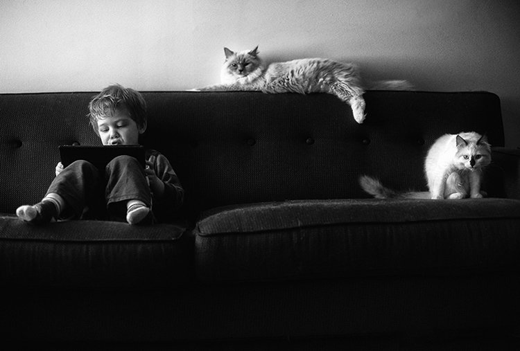 boy-cat-friendship-beth-mancuso-lounge