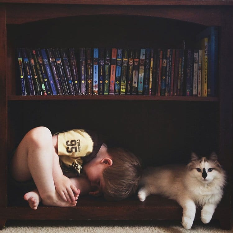 boy-cat-friendship-beth-mancuso-shelves