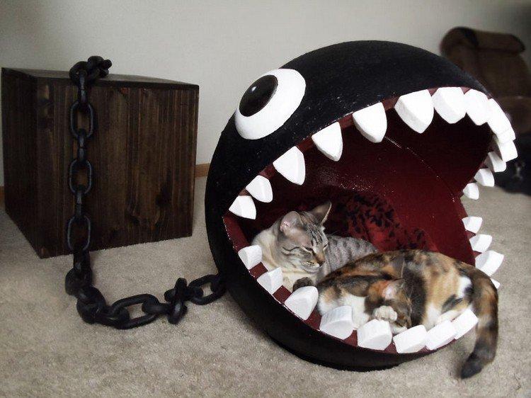 cat bed chomp