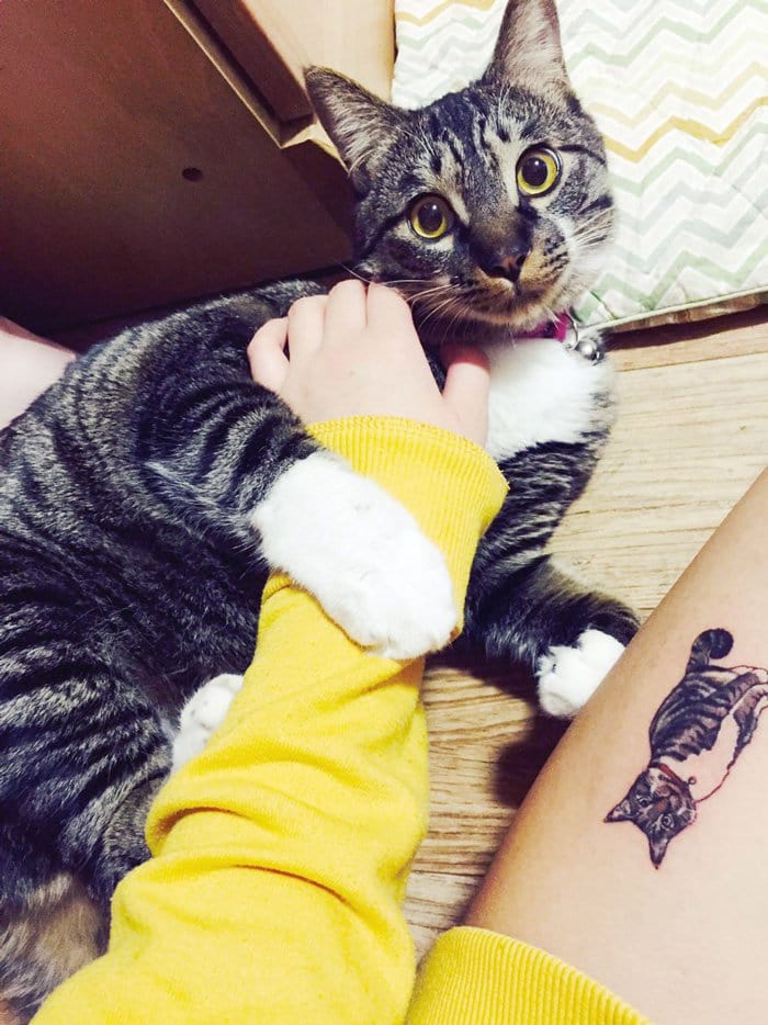 cat-tattoo-tabby-next