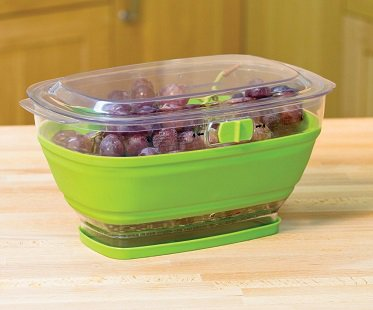 & Collapsible Food Container
