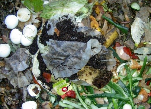 compost-tea-bags