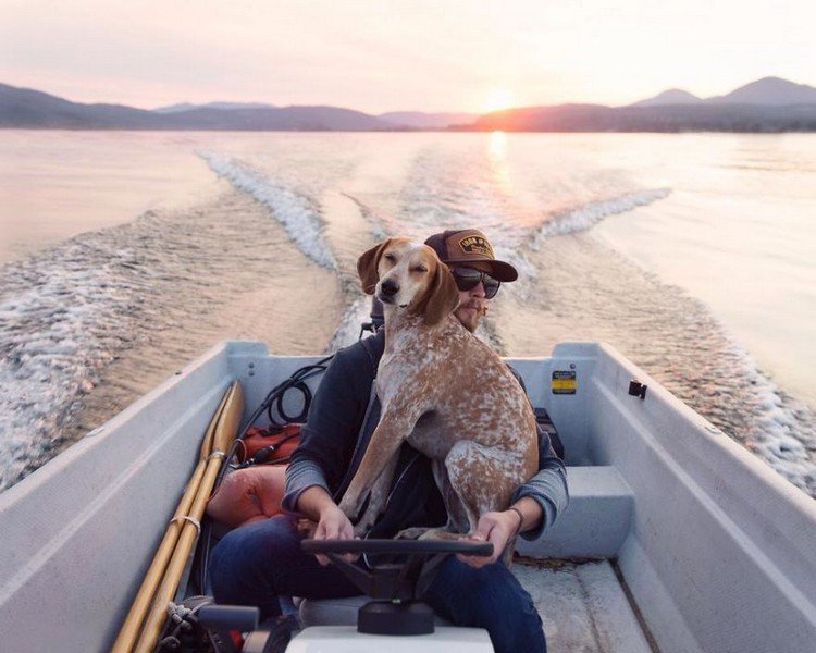 dog man boat