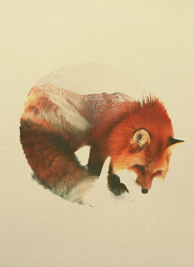 double exposure fox