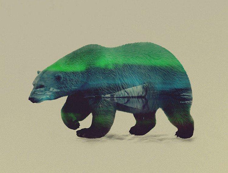 double exposure polar bear green