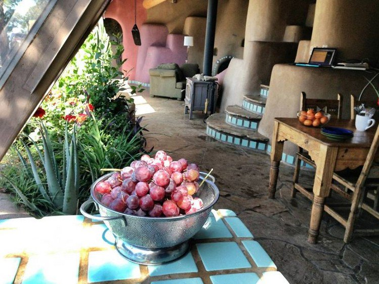 earthship grapes table